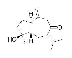 Isoprocurcumenol