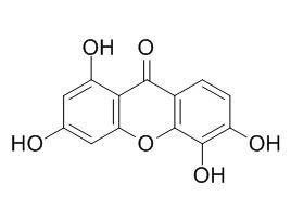 1,3,5,6-Tetrahydroxyxanthone