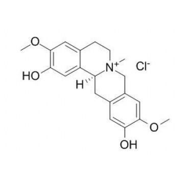 Phellodendrine chloride