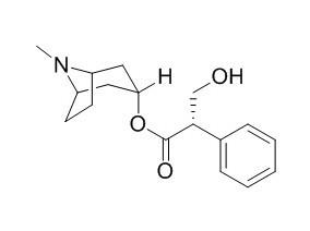 Hyoscyamine