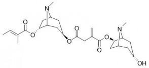 Schizanthine E