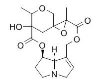 Adonifoline