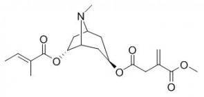 Schizanthine G