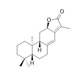 Jolkinolide E