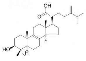 Eburicoic acid