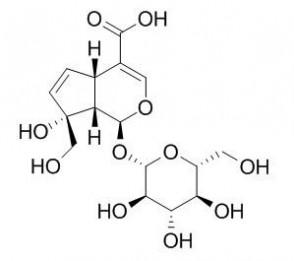Monotropein
